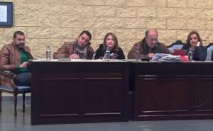 Comunicado Andalucista sobre el Pleno de Febrero