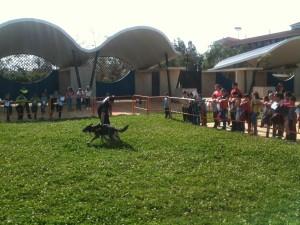 VI Exhibición de Medios y Cuerpos de Seguridad y Emergencias en Isla Cristina