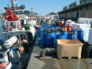 Ayudas de la Junta a la Flota de Arrastre y Cerco por la Parada Temporal