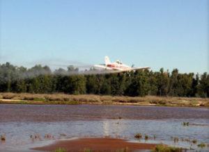 El Servicio de Control de Mosquitos (SCM) intensifica el tratamiento ante la coincidencia de lluvias y mareas vivas