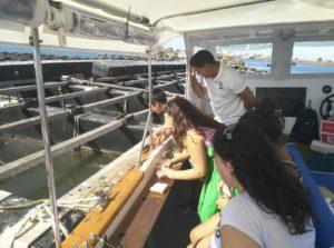 Los niños y niñas de los Talleres de Verano de los Servicios Sociales isleños disfrutan de una excursión en barco