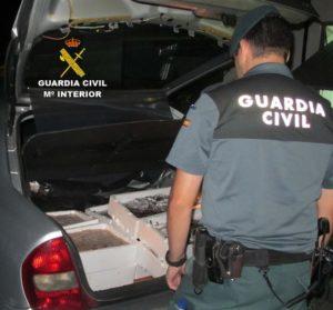 La Guardia Civil interviene pescado de talla no reglamentaria en Isla Cristina