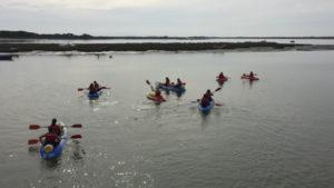 II descenso del Río Piedras en Kayak, nueva propuesta deportiva en Islantilla