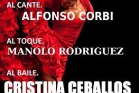 Viernes Flamenco en la Peña Cultural Flamenca La Higuerita