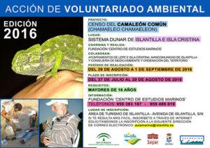 Comienzan las jornadas para elaborar el Censo del Camaleón en el sistema dunar de Islantilla e Isla Cristina