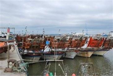 El PSOE pide ayudas del Gobierno para la flota por la veda de la chirla