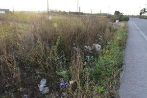 El PP de Lepe pide a Diputación que finalice la limpieza de los arcenes de la carretera Lepe – El Terrón