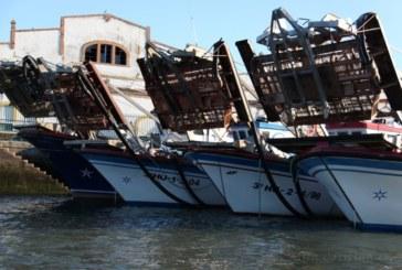 Las fuertes lluvias dejan amarrada la flota pesquera de Isla Cristina