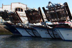 La Subdelegación del Gobierno en Huelva, informa al sector pesquero sobre el uso del nuevo diario de pesca