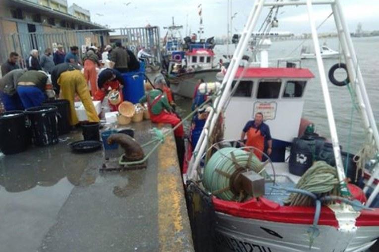 Preocupación por los retrasos en el pago de las nóminas de la Lonja de Isla Cristina