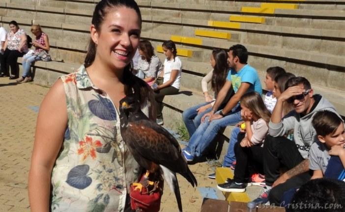 Imágenes VIIII Concurso morfológico de belleza de aves de presa Ciudad de Isla Cristina