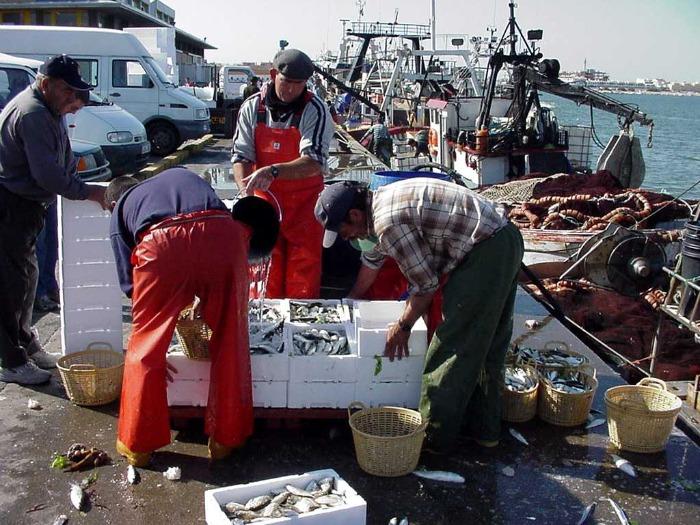 El PSOE de Huelva pregunta al Gobierno por los planes de futuro de la captura de la sardina