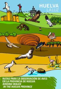 Isla Cristina en la guía de las principales rutas para la observación de aves en la provincia