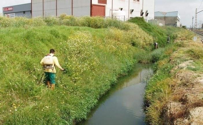 El Servicio de Control de Mosquitos de Diputación inicia el mes de mayo actuando intensivamente sobre los focos