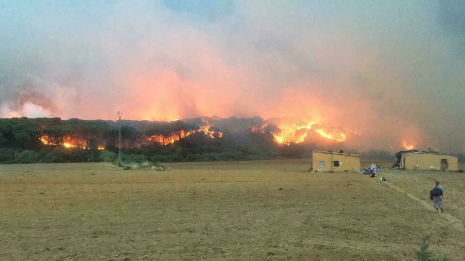 Un gran incendio cerca el corazón de Doñana