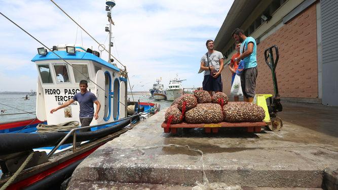 La madre de dos marineros de Isla Cristina envió una carta a la directora general de Pesca