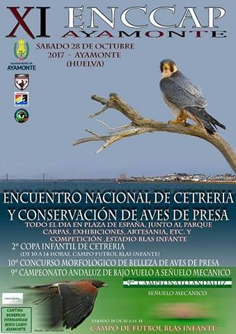 """Ayamonte acogerá el """"XI Encuentro Nacional de Cetrería y Conservación de Aves de Presa"""""""