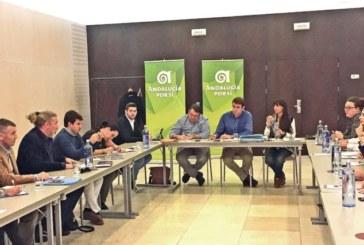 """Andalucía Por Sí """"2017 no ha sido un año para enmarcar"""""""