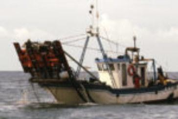 Carta al consejero de Agricultura y Pesca de las mujeres de marineros afectados por la chirla
