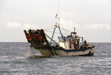 Mujeres de Isla Cristina de afectados por parada chirla se concentran para reclamar soluciones