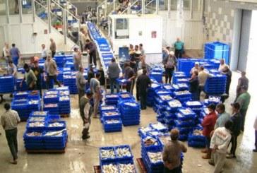 Los trabajadores de la lonja de Isla Cristina se concentrarán ante el «impago» de las tres últimas nóminas