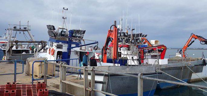 El sector pesquero de Isla Cristina pospone la concentración del lunes en Sevilla