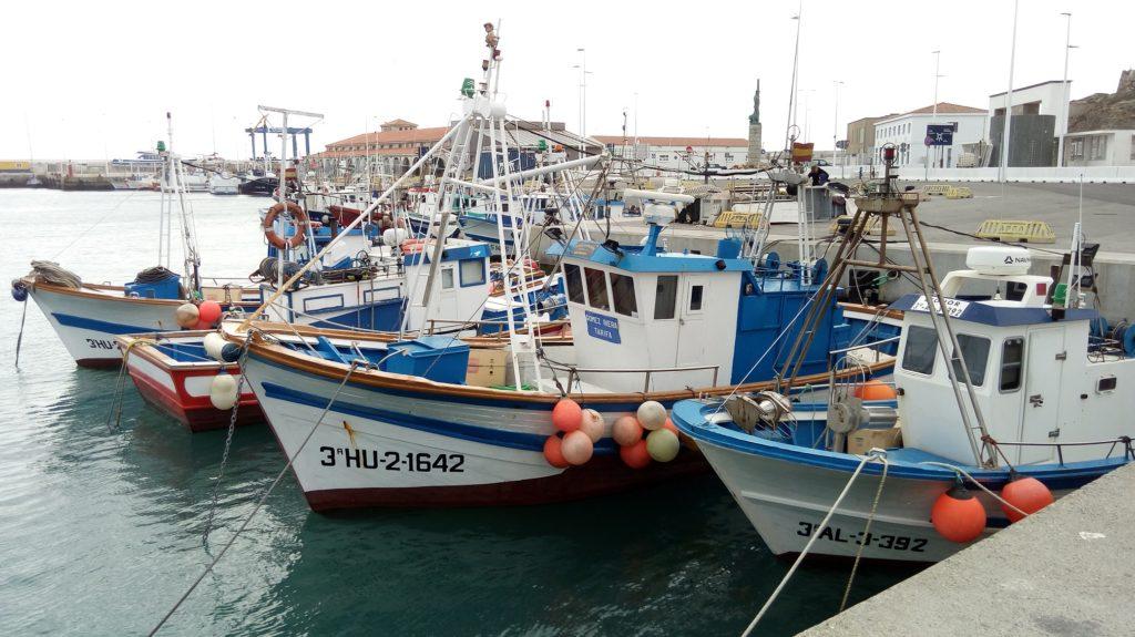 El sector pesquero onubense estima pérdidas por tres millones por amarre y desperfectos en barcos