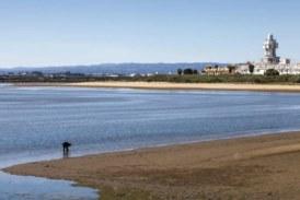 Isla Cristina tendrá este verano una playa para mascotas